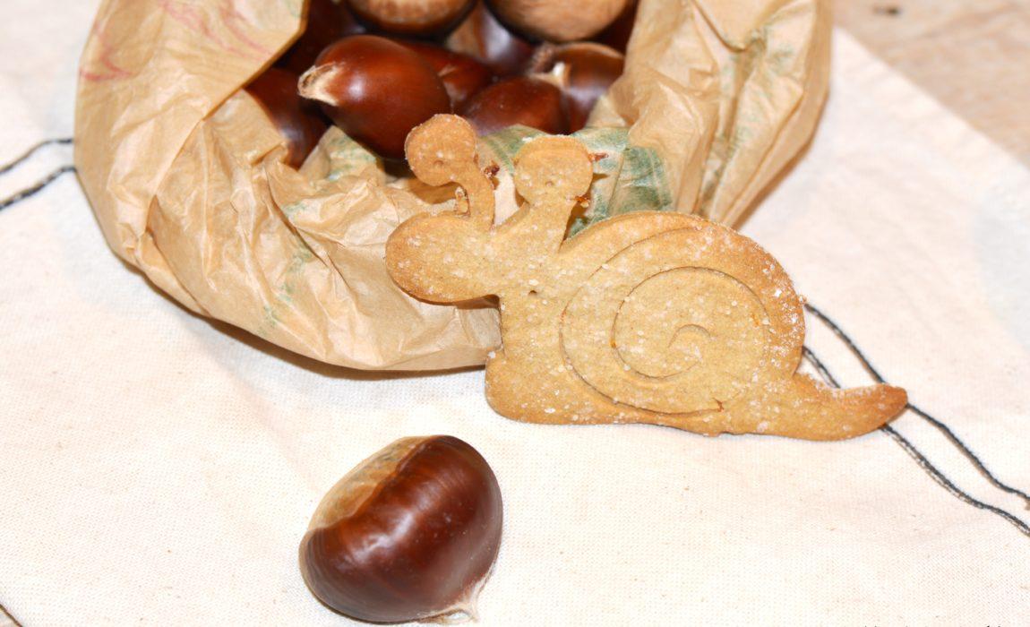 Biscuits châtaigne orange